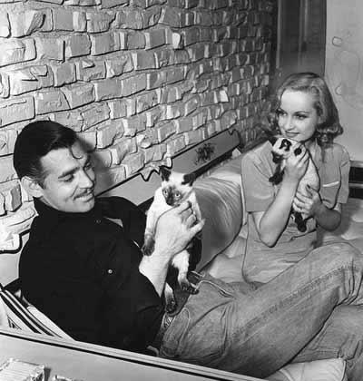 کارول لمبارد زیبا و کلارک گیبل مشغول بازی با گربههایشان. دوران تاهل که البته سه سال بیشتر طول نکشید