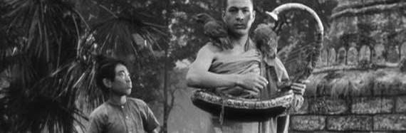 نگاهی به فیلم چنگ برمه ای The Burmese Harp