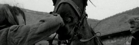 نگاهی به فیلم اسب تورین The Turin Horse
